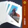 Knight 81 - Limited Print
